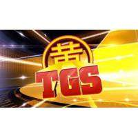 logo TGS - Toulouse Game Show