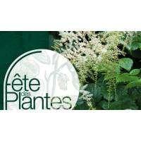 Fête des Plantes de Printemps de Saint-Jean de Beauregard cover