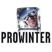 logo Prowinter