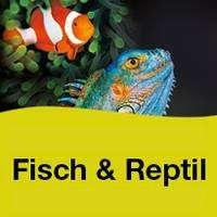 logo Fisch & Reptil