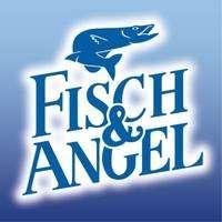 logo Fisch & Angel