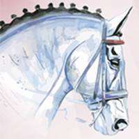 logo Mevisto Amadeus Horse Indoors