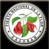 logo Fiesta Nacional de la Flor