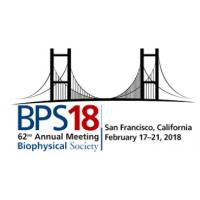 logo BPS - Biophysical