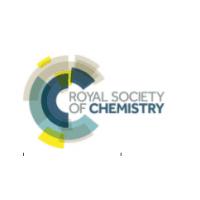 logo Chemical Biology Symposium