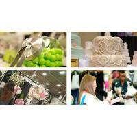 logo Best Wedding Showcase - York