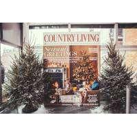 logo Country Living Christmas Fair Glasgow