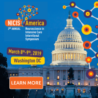 logo NICIS 2019 Annual Symposium, 8-9 March 2019, Washington DC, USA