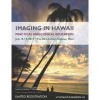 logo Summer Imaging in Hawaii July 2019
