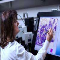 logo Mayo Clinic Myeloma and Related Disorders - Online Course