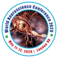 logo world neuroscience and neurology conference