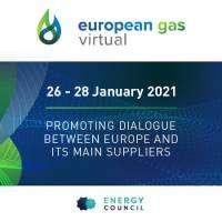 logo European Gas Virtual